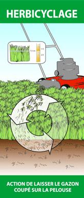Image du principe d'herbicyclage, illustrant une tondeuse qui coupe le gazon et qui laisse les rognures sur le sol pour nourrir la terre et ainsi aider à la croissance du gazon.