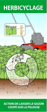 Illustration de l'herbicyclage